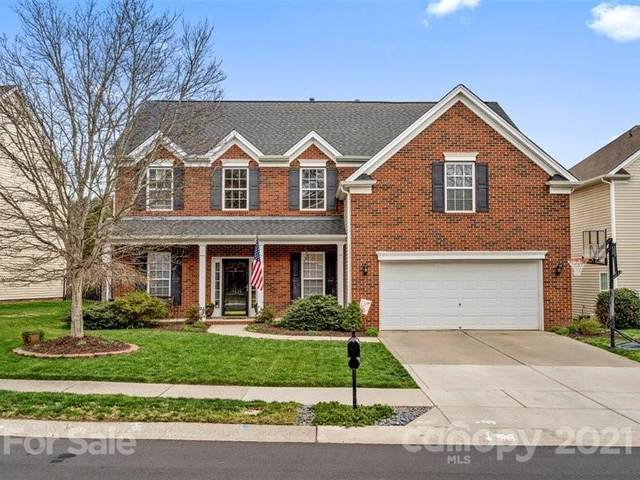15635 Prescott Hill Avenue, Charlotte, NC 28277 (#3719025) :: The Premier Team at RE/MAX Executive Realty