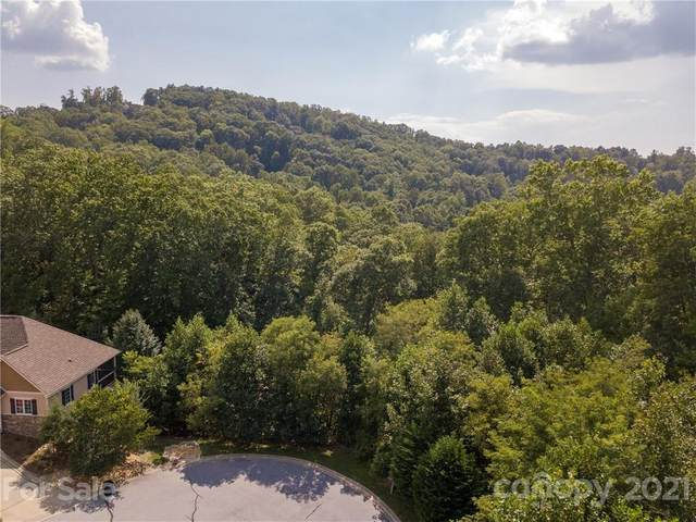 157 Deep Valley Lane, Hendersonville, NC 28791 (#3719314) :: Carlyle Properties