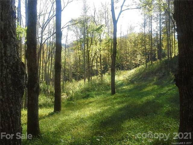 000 Betsys Gap Road, Clyde, NC 28721 (#3719325) :: Cloninger Properties