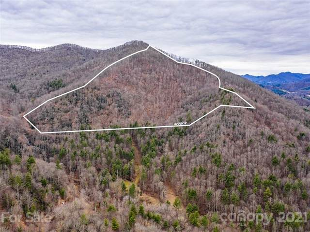0 Gilders Creek Road, Burnsville, NC 28714 (#3719914) :: LePage Johnson Realty Group, LLC