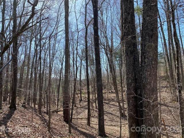 Lot 93 Darrow Drive, Nebo, NC 28761 (#3720218) :: Scarlett Property Group