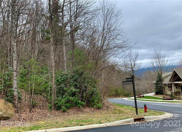 67 Old Lafayette Lane #33, Black Mountain, NC 28711 (#3720338) :: The Premier Team at RE/MAX Executive Realty
