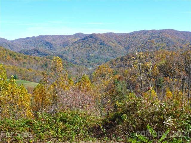 140 Scott's Trail, Hot Springs, NC 28743 (#3720443) :: Willow Oak, REALTORS®