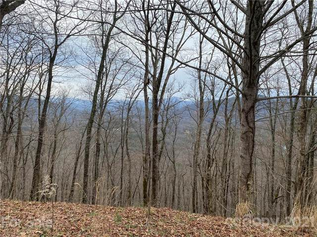 00 Kirk Road, Dillsboro, NC 28725 (#3720768) :: Stephen Cooley Real Estate Group