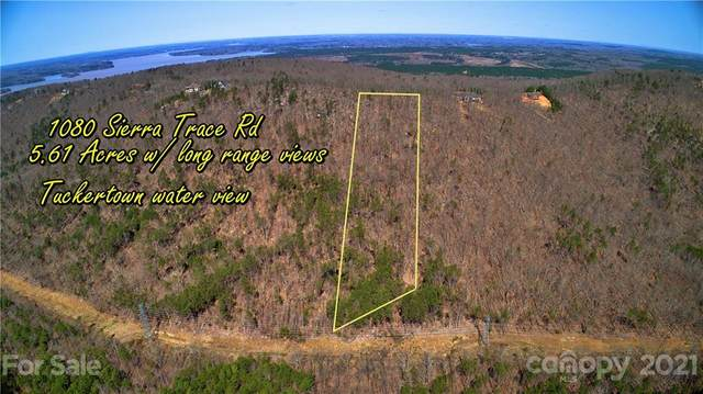 1080 Sierra Trace Road #131, Denton, NC 27239 (#3721154) :: Robert Greene Real Estate, Inc.