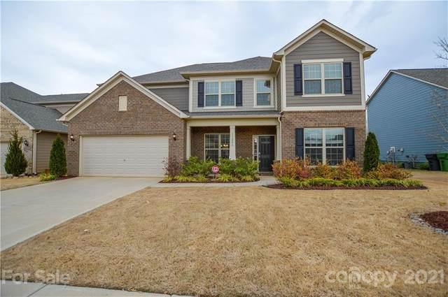 11206 Crane Creek Drive, Charlotte, NC 28278 (#3721410) :: Rhonda Wood Realty Group