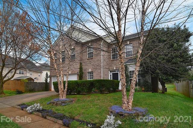 10329 NW Montrose Drive, Charlotte, NC 28269 (#3721621) :: Rhonda Wood Realty Group