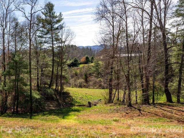 15 Temujin Drive #5, Leicester, NC 28748 (#3721928) :: LePage Johnson Realty Group, LLC