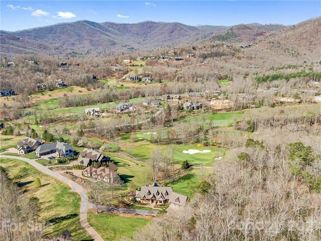 36 Rain Lily Trail, Arden, NC 28704 (#3722014) :: Stephen Cooley Real Estate Group