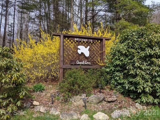 0000 Quail Cove Road, Clyde, NC 28721 (#3722367) :: Carolina Real Estate Experts