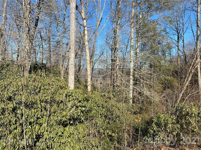 TBD Pisgah Forest Drive #10, Pisgah Forest, NC 28768 (#3722490) :: Caulder Realty and Land Co.