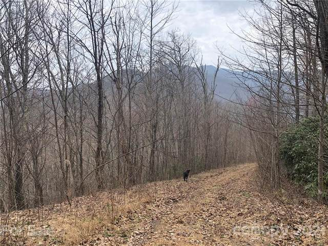 00000 Bartlett Mountain Road Lot 14, Asheville, NC 28805 (#3722503) :: DK Professionals