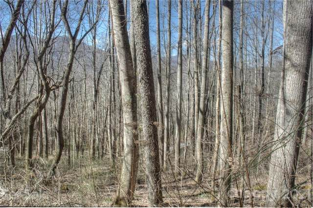 00 Shiners Trail, Waynesville, NC 28786 (#3723164) :: Robert Greene Real Estate, Inc.