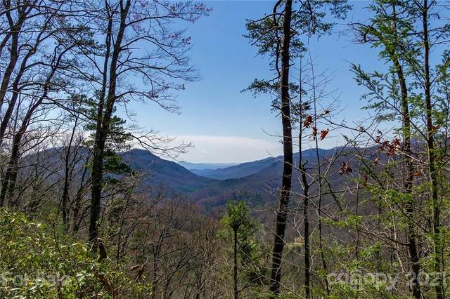 tbd Wild Cherry Lane #314, Old Fort, NC 28762 (#3723261) :: Caulder Realty and Land Co.