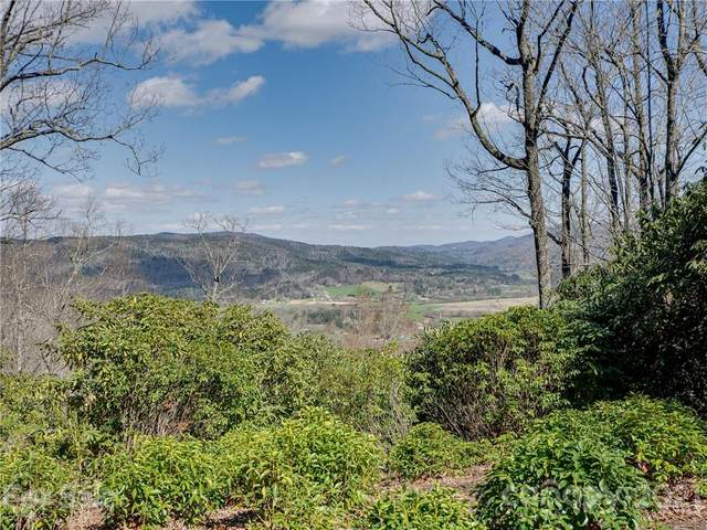 Lot 20 Hawkins Hollow Road, Pisgah Forest, NC 28768 (#3723444) :: Willow Oak, REALTORS®