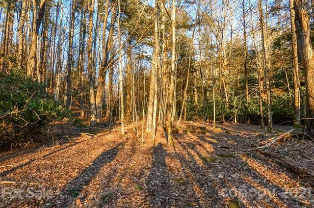 TBD Near Sawrey Road #30, Boone, NC 28607 (#3723649) :: Carlyle Properties