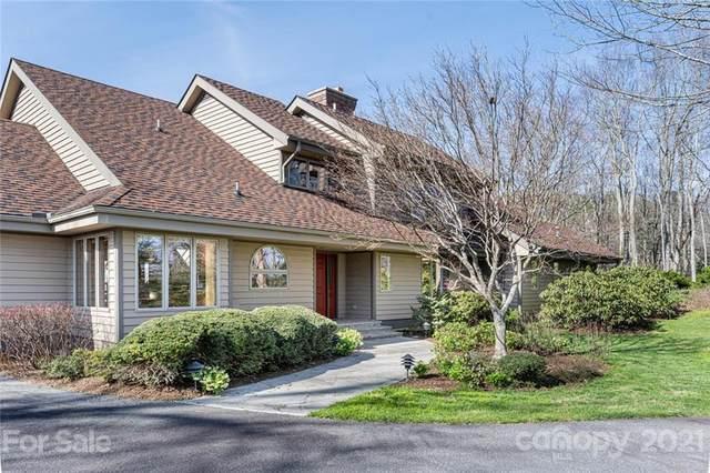 100 Big Spring Drive, Asheville, NC 28804 (#3724024) :: Robert Greene Real Estate, Inc.