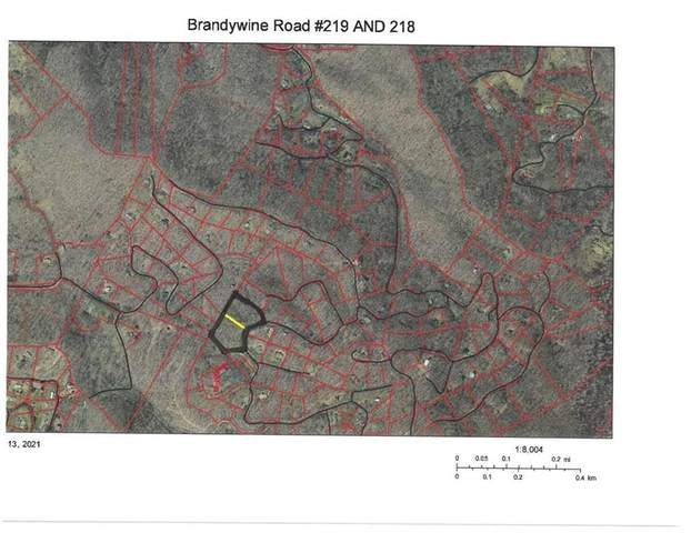OOOO Brandywine Road 219 AND 218, Waynesville, NC 28786 (#3724180) :: Scarlett Property Group