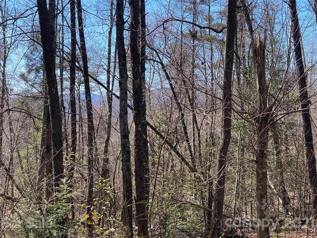 V/L off Henry Mccall Road, Marion, NC 28752 (#3724306) :: Stephen Cooley Real Estate Group