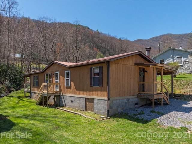 433 Little Cove Road, Waynesville, NC 28786 (#3724359) :: LePage Johnson Realty Group, LLC