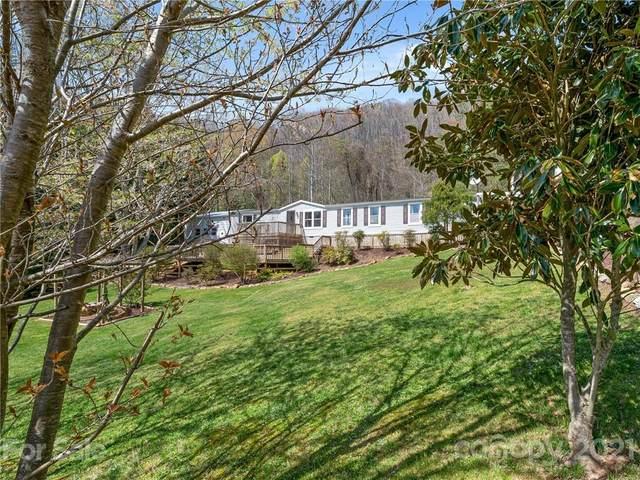66 Lemon Creek Drive, Candler, NC 28715 (#3724540) :: LePage Johnson Realty Group, LLC