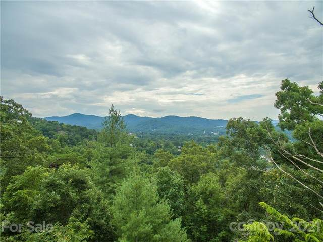 147 Senator Reynolds Road #11, Asheville, NC 28804 (#3725105) :: Lake Wylie Realty