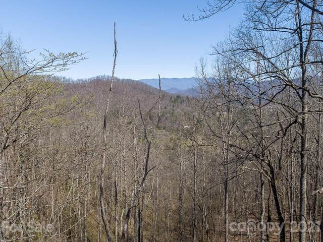 Lot 10 Cave Springs Road #10, Cullowhee, NC 28723 (#3725464) :: Exit Realty Vistas