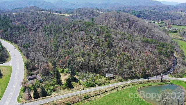 1409 Us 441 Highway, Whittier, NC 28789 (#3725943) :: LePage Johnson Realty Group, LLC