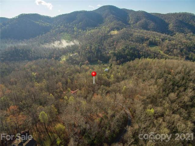 123 Havens Creek Road, Black Mountain, NC 28711 (#3725989) :: MOVE Asheville Realty