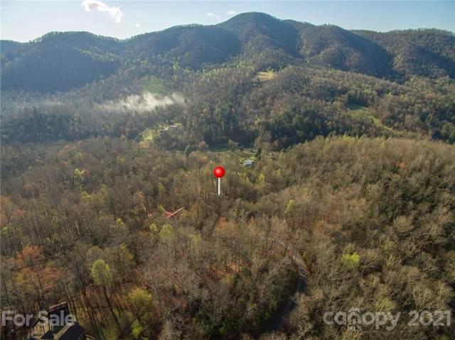 123 Havens Creek Road, Black Mountain, NC 28711 (#3725989) :: Carolina Real Estate Experts