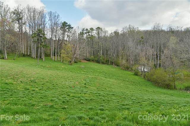 1568 Tunnel Road, Asheville, NC 28805 (#3726146) :: Modern Mountain Real Estate
