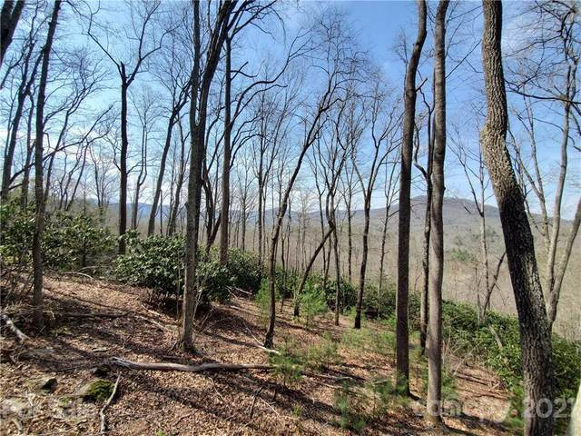 211 Secluded Hills Lane #012, Arden, NC 28704 (#3726708) :: Stephen Cooley Real Estate Group