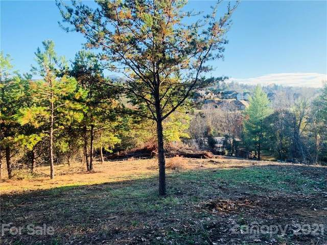 99999 Alpine Way, Weaverville, NC 28787 (#3726838) :: Cloninger Properties