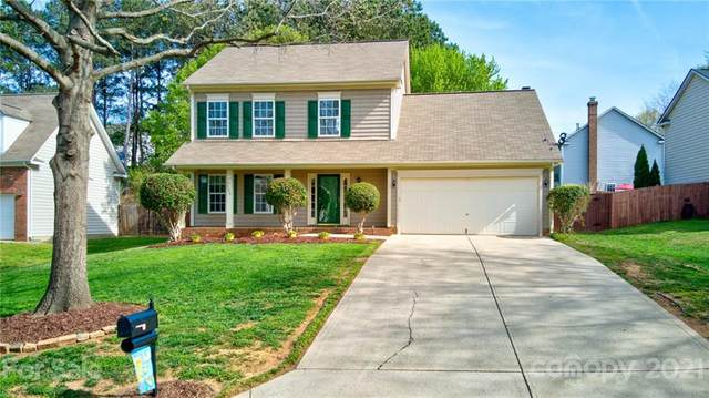 125 Red Tip Lane, Mooresville, NC 28117 (#3727438) :: Rowena Patton's All-Star Powerhouse