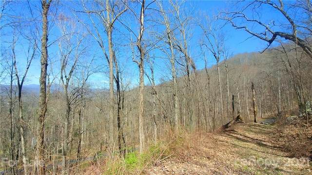 632 Mountain Cove Road, Waynesville, NC 28786 (#3727461) :: Carlyle Properties