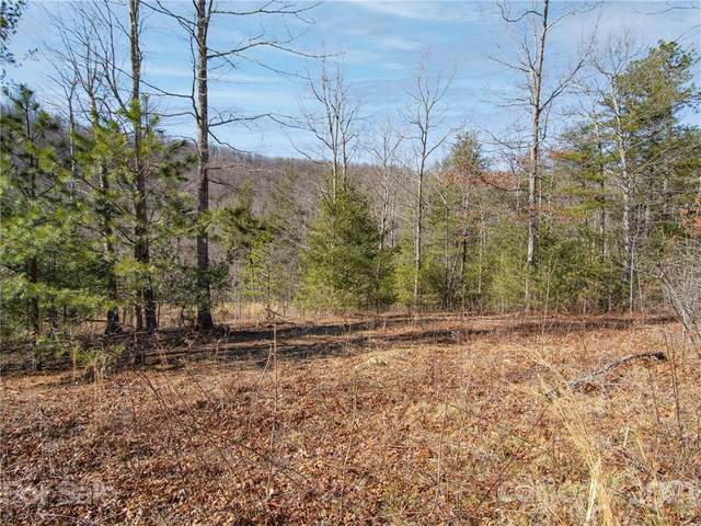 0000 Mountain View Church Road Tract 3, Zirconia, NC 28790 (#3727520) :: Todd Lemoine Team