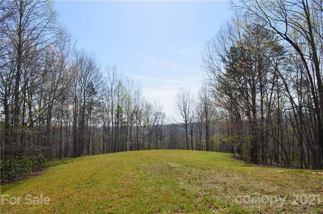 999 Fallen Tree Lane, Mill Spring, NC 28756 (#3728162) :: Premier Realty NC