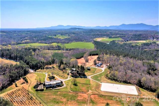 376 Herbert Page Road, Tryon, NC 28782 (#3728224) :: Keller Williams Professionals
