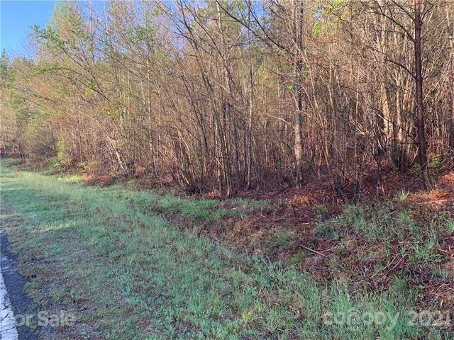 999 Green River Cove Road #15, Mill Spring, NC 28756 (#3728238) :: TeamHeidi®