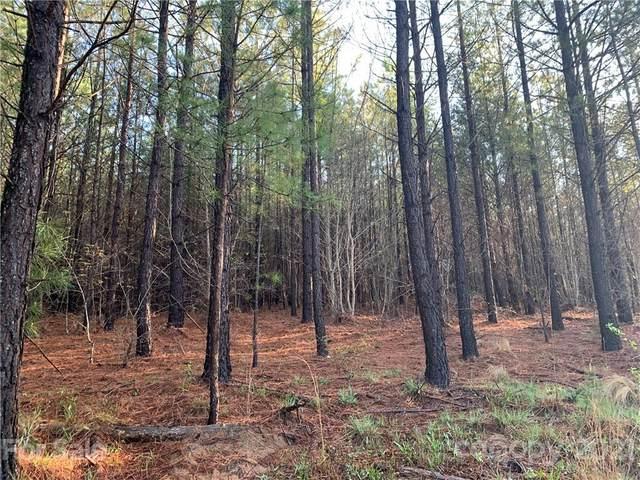 999 Green River Cove Road #16, Mill Spring, NC 28756 (#3728249) :: Willow Oak, REALTORS®