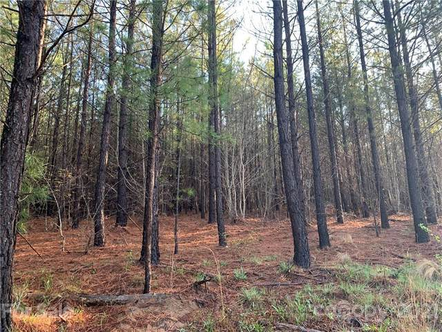 999 Green River Cove Road #16, Mill Spring, NC 28756 (#3728249) :: TeamHeidi®