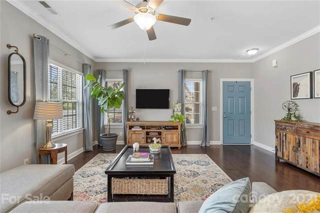 15328 Barossa Valley Street, Charlotte, NC 28277 (#3728375) :: High Performance Real Estate Advisors