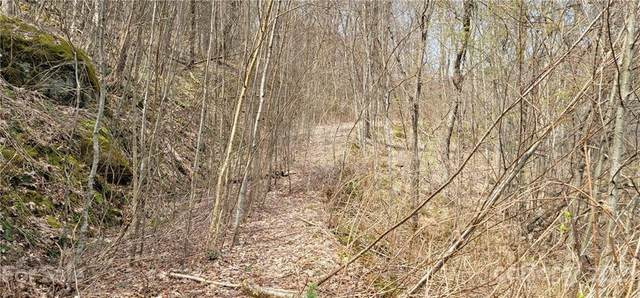 Lot 135 Ramp Patch Lane, Waynesville, NC 28786 (#3728488) :: The Premier Team at RE/MAX Executive Realty