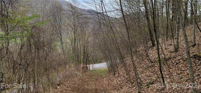 Lot 138 Chestnut Flats Lane, Waynesville, NC 28786 (#3728519) :: Keller Williams Professionals