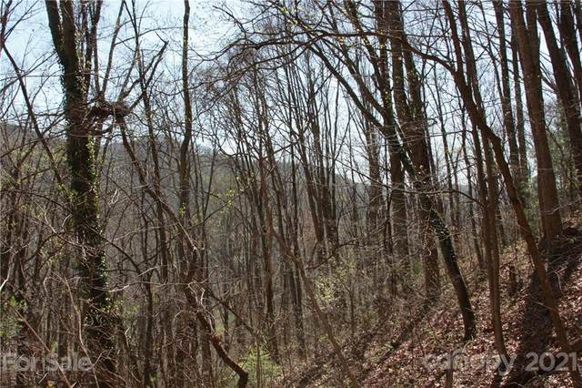 000 Eller Cove Road, Weaverville, NC 28787 (#3728830) :: MOVE Asheville Realty