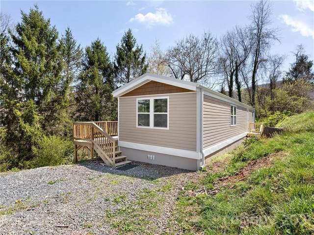 63 Reddick Road, Asheville, NC 28805 (#3729125) :: Lake Norman Property Advisors