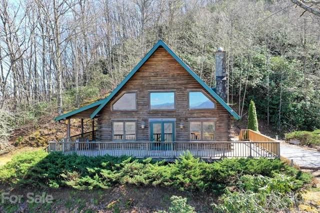 175 Owl Lookout Road, Sylva, NC 28779 (#3729281) :: High Performance Real Estate Advisors