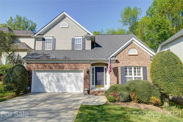 14124 Wild Elm Road, Charlotte, NC 28277 (#3729397) :: High Performance Real Estate Advisors