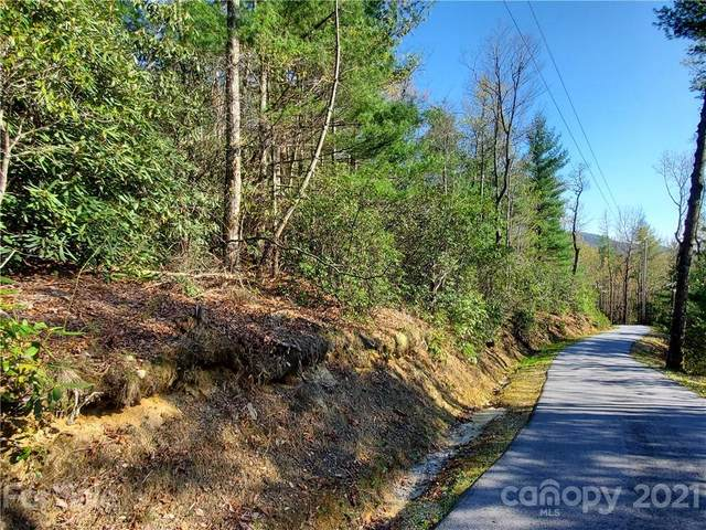 34 West View Road #34, Brevard, NC 28712 (#3729664) :: Carlyle Properties