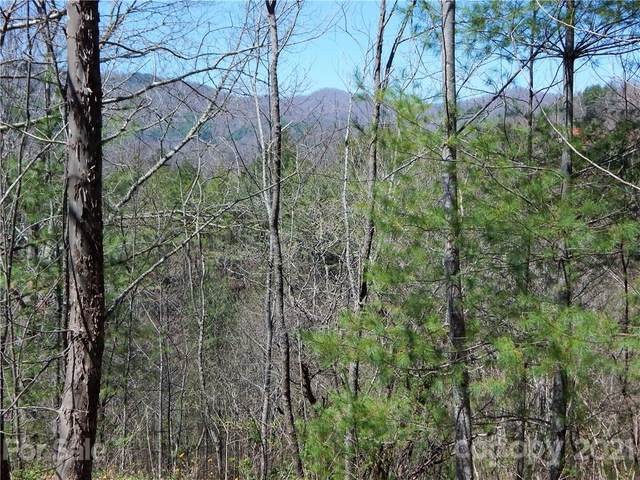 00 Blueberry Drive A, Burnsville, NC 28714 (#3729727) :: LePage Johnson Realty Group, LLC